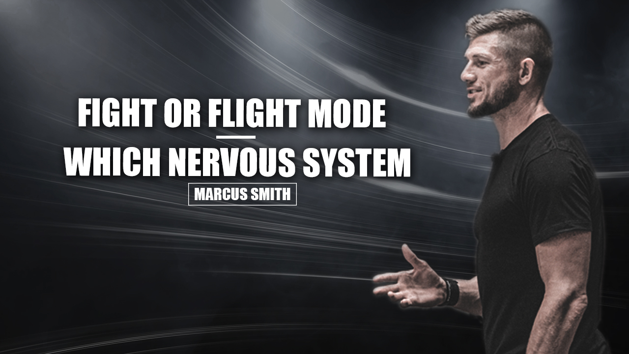 Fight or flight mode?